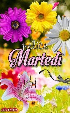 Italian Greetings, Gif, Happy Day, Tuesday, Italy, Card Stock, Wednesday, Italia
