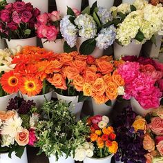 Fresh Flowers in San Francisco