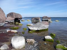 ESTONIA - Lahemaa National Park - This was the first area of the former Soviet Union to be designated a national park.