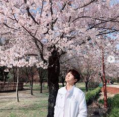 Kim myungsoo also my favorite one 💕 Drama Korea, Korean Drama, Asian Actors, Korean Actors, Gong Myung, L Infinite, K Drama, Best Kdrama, Lee Hyuk