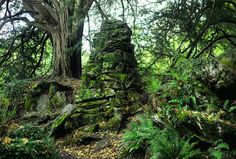 Witch kitchen, supposedly haunted ~ near Blarney Castle, Ireland