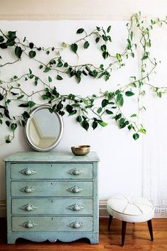 Indoor Vines - 15 Creative Ways To Decorate With Leaves - Photos