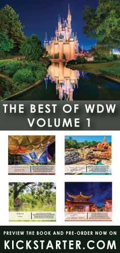 "If you miss the beautiful ""picture books"" you used to be able to buy at Disney World ... then here is some exciting news!  The Best of WDW - Volume 1 is a stunning picture guide to the Magic Kingdom, Epcot, Disney's Hollywood Studios and Animal Kingdom.  Kickstarter program under way now."