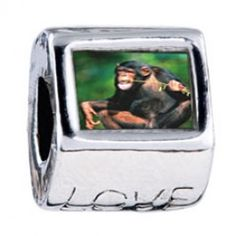 Funny Monkey Photo Love Charms  Fit pandora,trollbeads,chamilia,biagi,soufeel and any customized bracelet/necklaces. #Jewelry #Fashion #Silver# handcraft #DIY #Accessory