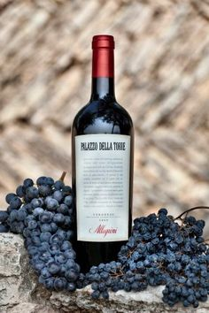 """Of the grapes that go into a bottle of Allegrini Palazzo Della Torre, 30% are dried.  Making this a true """"baby"""" Amarone #wine."""