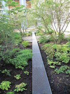Le Jardin Clair-Obscur by Wagon-landscaping « Landscape Architecture Works Contemporary Landscape, Urban Landscape, Landscape Design, Garden Design, Outdoor Landscaping, Outdoor Gardens, Urban Gardening Berlin, Paving Design, Landscape Architecture