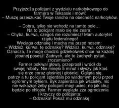 30 chamskich, nieprzyzwoitych i niepoprawnych politycznie żartów – Demotywatory.pl