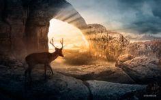 Wallpapers HD: Autumn Sunlight