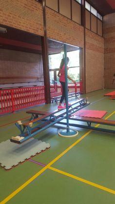. Gymnastics, Basketball Court, Stage, Teacher, Activities, School, Water, Sports, Fun