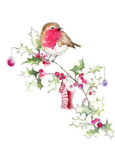 Billedresultat for traditional christmas birds for illustration Watercolor Christmas Cards, Christmas Drawing, Christmas Paintings, Illustration Noel, Christmas Illustration, Christmas Bird, Christmas Images, Christmas Pictures To Draw, Merry Christmas