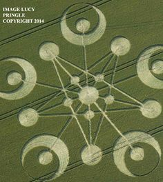 Crop Circle at Ackling Dyke, Nr Sixpenny Handley, Doreset, United Kingdom. Reported 29th June 2014
