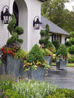 Unique by Design l Helen Weis : Container Gardening Unique Gardens, Beautiful Gardens, Large Containers, Colorful Garden, Growing Flowers, Architectural Elements, Garden Planters, Container Gardening, Garden Landscaping