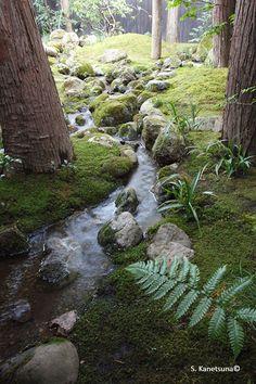 - Purismus, Authentizität, Perfektion – Niwaki und japanische Gärten – Frederique Dumas www.japanese-gard … www.frederique-du … www.jardinsplenit … purism, authenticity, perfection – Niwaki and Japanese gardens – Frederique Duma…