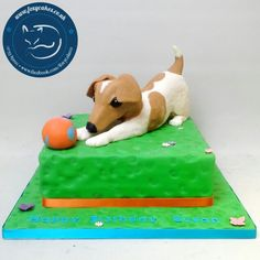 Jack Russell cake, made by The Foxy Cake Company!