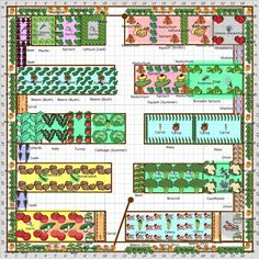 Garden Plan - 2013: Farmhouse 5 another customers lovely plan for a farm using the growveg.com garden planner.