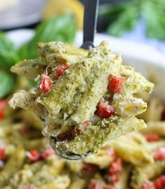 This creamy pesto pasta vegan casserole is pure comfort food! It's super simple to assemble, it's ready in 30 minutes, and it's loaded with delicious pesto flavor that everyone will gobble up! Vegan. Pesto Pasta Bake, Creamy Pesto Pasta, Vegan Pesto Pasta, Vegan Alfredo Sauce, Vegan Casserole, Casserole Dishes, Vegan Costco, Rice And Beans Recipe, White Sauce Pasta