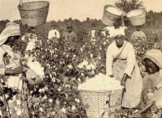 Some Enslaved Women Were Required to Work Through Pregnancies Many slave owners forced enslaved women to continue working even when they became pregnant. Description from swagghopent.com. I searched for this on bing.com/images