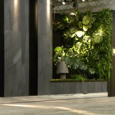 Verde Profilo Vertical Garden