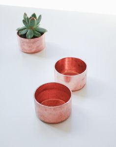 Julia Kostreva - Mini copper planter (http://www.juliakostreva.com/collections/new/products/mini-copper-planter)