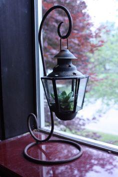 antique hanging lantern glass terrarium