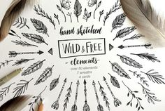 Wild and Free handsketched elements by Kate Macate on @creativemarket