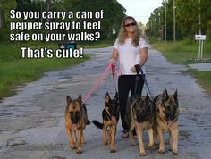 :) german shepherds