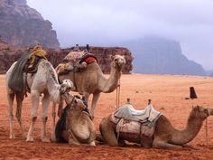 Giordania -deserto Wadi Rum