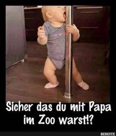 Sicher das du mit Papa im Zoo warst?! | Lustige Bilder, Sprüche, Witze, echt lustig