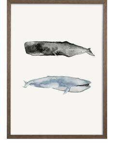 """Whale Grouping2"" by Natasha Marie""Whale Grouping2"" by Natasha Marie"