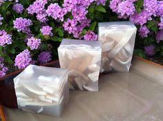 The Spices Of Life . . .: Thạch Dừa Sương Sa (Coconut Juice Jelly)