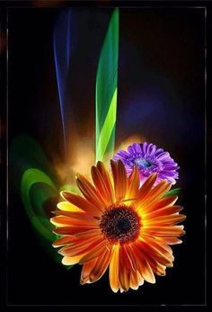 Flower Pictures, Flower Images, Glitters for Orkut, Myspace, Tagged Cute Flower Images, Flower Pictures, Galaxy Phone Wallpaper, Emo Wallpaper, Background Images For Editing, Sunflower Wallpaper, Gif Animé, Animated Gif, Animation
