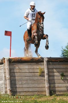 Fearless! #Horse #Eventing #Cross country