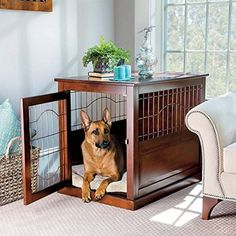 Unique Dog Gifts for Pet Owners