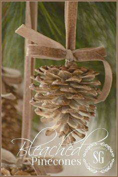 Bleached Pinecones - Here's a way to give pinecones a beautiful bleached look. So easy! And amazing! I'm a huge fan of NATURALS at Christmas.…