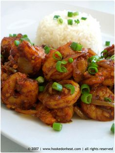 I woke up this morning craving a shrimp stirfry. Remembering the Costco sized bag I have in the freezer, I decided to give this Ginger Shrimp Stir-fry a go! Gluten Free Chilli, Chili Shrimp, Shrimp Stir Fry, Indian Food Recipes, Ethnic Recipes, Asian Recipes, Shrimp Recipes, Shrimp Meals, Food Shrimp