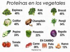 Proteínas en los vegetales