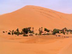Oubira Oasis - Westelijke Sahara Marokko