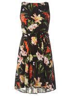 Womens **Billie & Blossom Petite Black Butterfly Print Skater Dress- Black