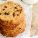 Coconut flour cookies are for just about anyone to eat – they are gluten-free, dairy-free, grain-free, refined sugar-free, and egg-free. Super chewy and studded with chocolate chips, they go perfect with a glass of milk.