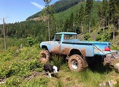Image result for Toyota Stout 4x4