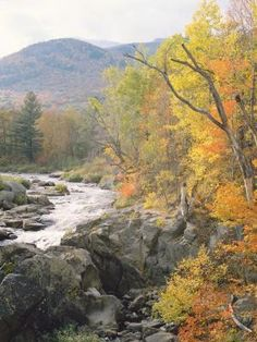 The stunning landscapes of Michigan make for great outdoor getaways. www.MiCraftBeerCulture.com