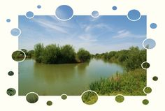 Claygate Lakes - http://carpfish.co.uk/listings/claygate-lakes/