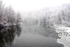 Huron River, Ann Arbor.