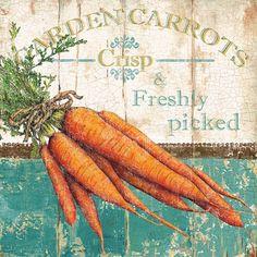Tangletown Fine Art Garden Carrots by Marie Elaine Cusson Framed Vintage Advertisement Decoupage Vintage, Decoupage Paper, Vintage Art, Retro Art, Vintage Labels, Vintage Postcards, Vintage Seed Packets, Inspirational Wall Art, Country Art
