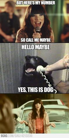 70 Best All Hello This Is Dog Memes Indeed Images Funny