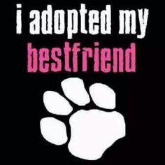 I love my doggy!!  <3