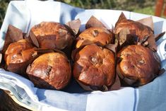 Chocolate & Orange Panettone   recipe from Ruth Clemens, GBBO s1 finalist, via The Pink Whisk