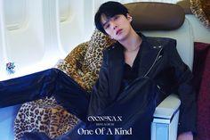 Jooheon, Shownu, Monsta X Minhyuk, Lee Minhyuk, Pop Photos, Yoo Kihyun, Hyun Woo, Korean Bands, Starship Entertainment