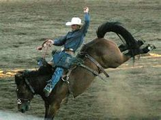 OH YA!!! Saddle bronc..best event ever!