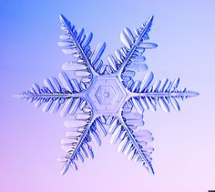 Snow Beautiful: Individual Snowflakes Captured In Incredible Photos